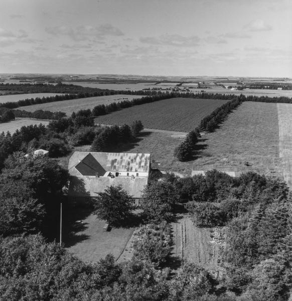 27. Vind, 1962. Hestbjergvej 10, 'Hedegård'.