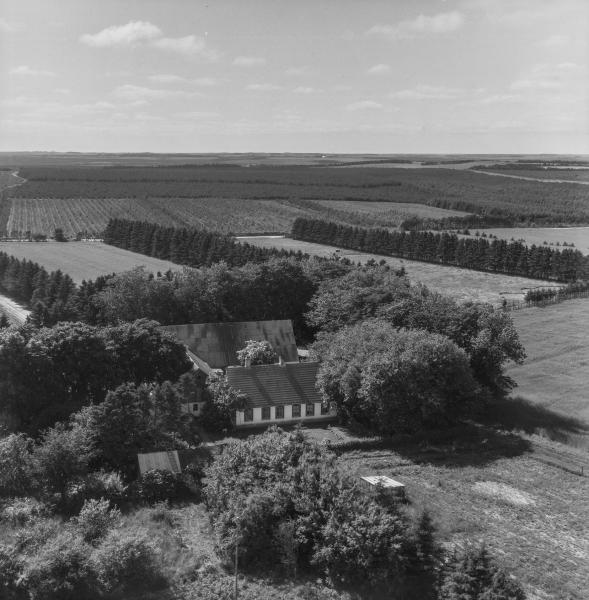 31. Vind, 1962. Hestbjergvej 16, 'Bjerregård'.