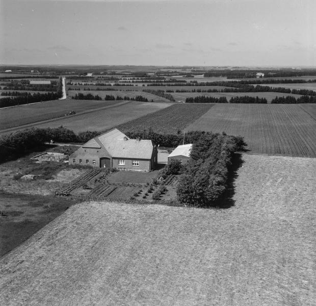 22. Vind, 1962. Hestbjergvej 2, 'Bundgård'.