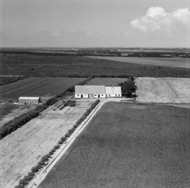 54. Vind, 1962. Råstedvej 10, 'Vestertoft',