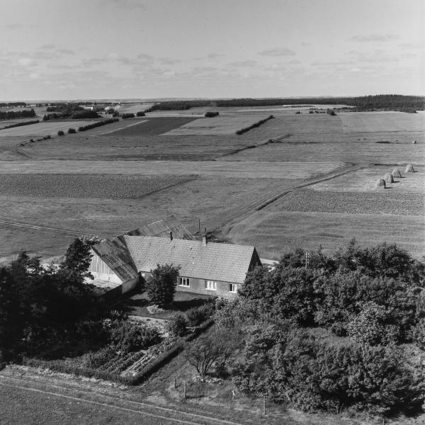 65. Vind, 1962. Skjernvej 216, 'Vester Spartoft'.