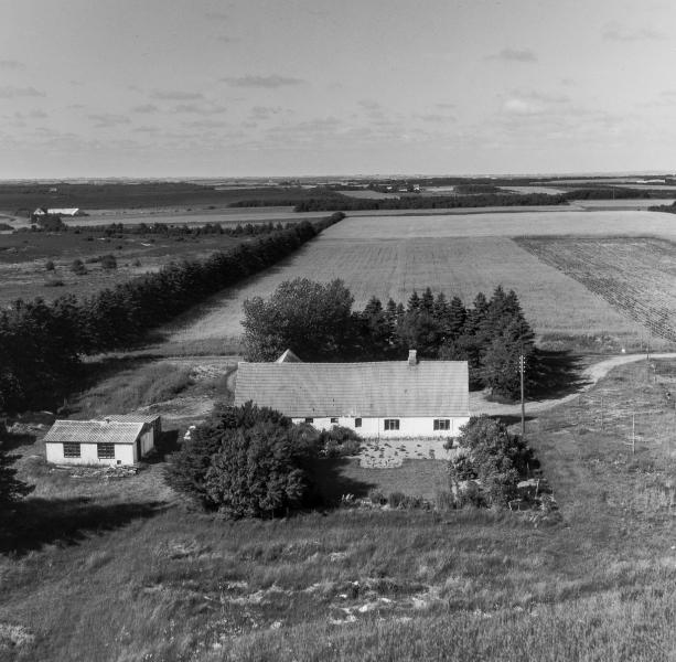66. Vind, 1962. Skjernvej 224, 'Damtofthus'.