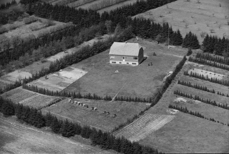 9. Vind, 1949. Blåkjærvej 5, 'Kjærlund'.