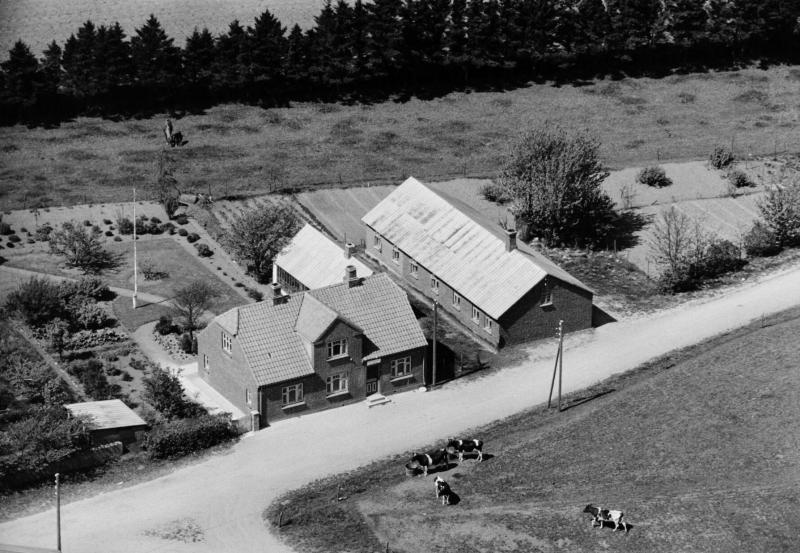 36. Vind, 1949. Røjkærvej 1 (kirkebyens købmandsforretning) og 3 (forsamlingshus).