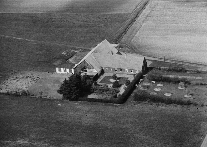 57. Vind, 1949. Skjernvej 216, 'Vester Spartoft'.