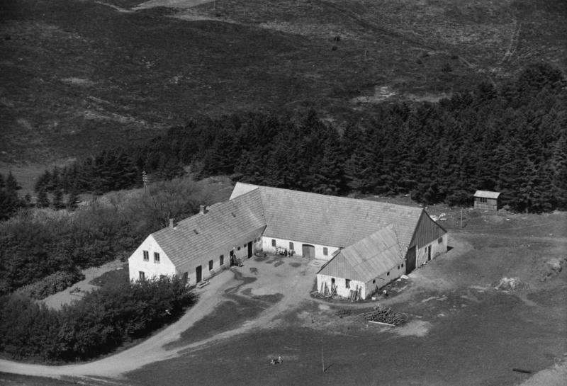 76. Vind, 1949. Trækrisvej 13, 'Trækris'.