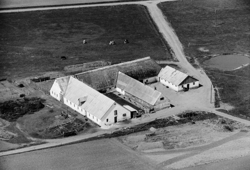 71. Vind, 1949. Trækrisvej 4, 'Gammel Skold'.