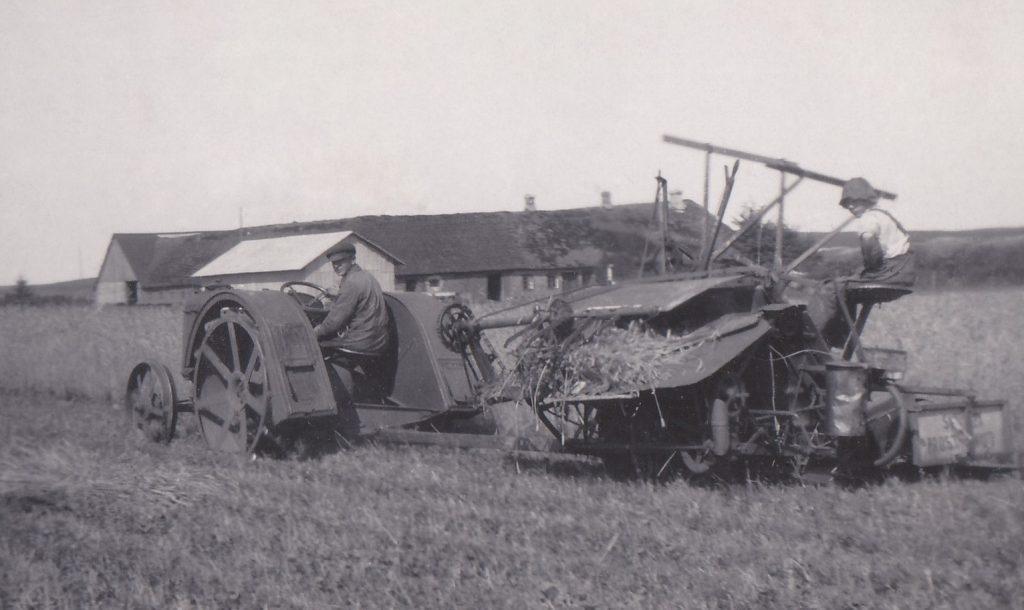 Der høstes i Troldtoft, omkring 1930.