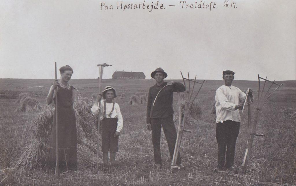 Der høstes i Troldtoft i 1914.